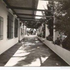 Postales: MARBELLA - HOTEL CLUB. TERRAZA - Nº 3. Lote 56120613