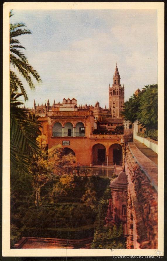27 - SEVILLA - REALES ALCAZARES.- LA GIRALDA DESDE LOS RR. ALCAZARES (Postales - España - Andalucia Moderna (desde 1.940))