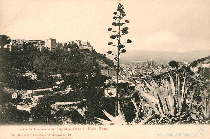 GRANADA REVERSO SIN DIVIDIR (Postales - España - Andalucía Antigua (hasta 1939))