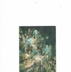 Postales: POSTAL ANTIGUA MALAGA SIN CIRCULAR CUEVA DE NERJA MALAGA ENTRADA A LA SALA DEL CATACLISMO. Lote 59842896