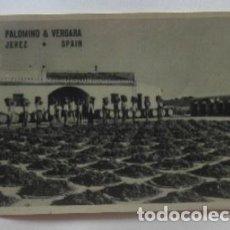 Postales: POSTAL DE JEREZ - PALOMINO Y VERGARA. Lote 62158592