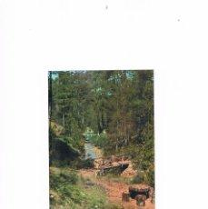Postales: POSTAL ANTIGUA JAEN ESCRITA POR DETRAS SIERRA DE CAZORLA. Lote 63231216