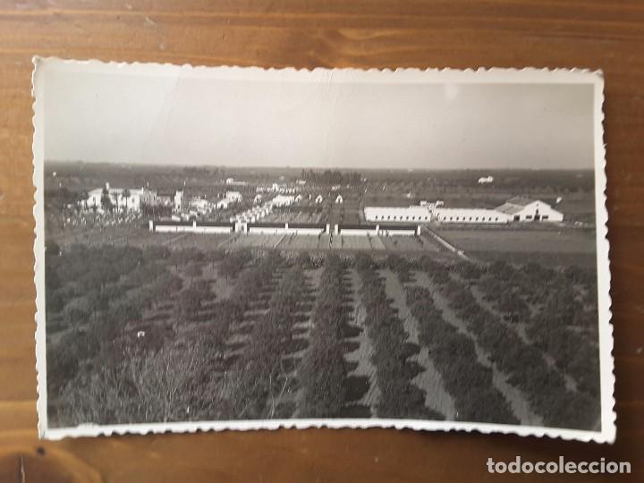 POSTAL FOTOGRÁFICA SANTA MATILDE - FOTOGRAFIA ARJONA (Postales - España - Andalucía Antigua (hasta 1939))