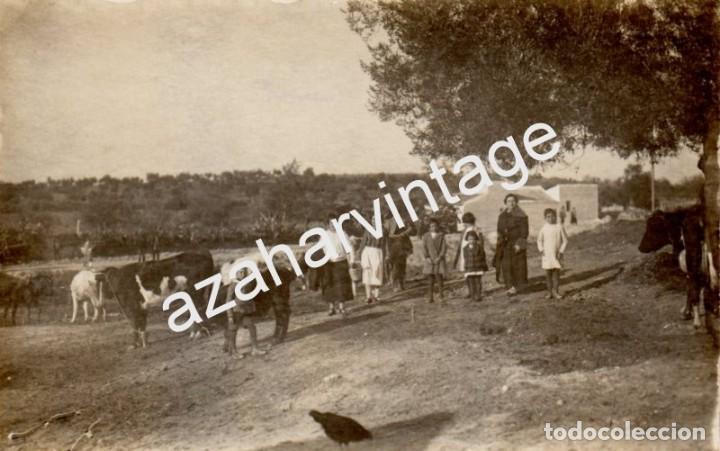 POSTAL FOTOGRAFICA, ESCENA TIPICA SIERRA DE HUELVA, A IDENTIFICAR (Postales - España - Andalucía Antigua (hasta 1939))