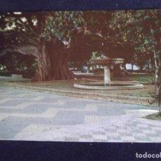 Postales: CADIZ-V3-NO ESCRITA-ALAMEDA RINCON. Lote 73503491
