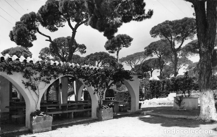 Ciudad De Marbella Málaga Comedor Del Campa Comprar Postales De Andalucía En Todocoleccion 83087572