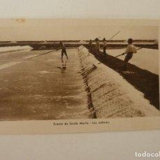 Cartes Postales: PUERTO DE SANTA MARÍA. CÁDIZ . LAS SALINAS. GRÁFICAS ANDALUZAS.. Lote 86718832