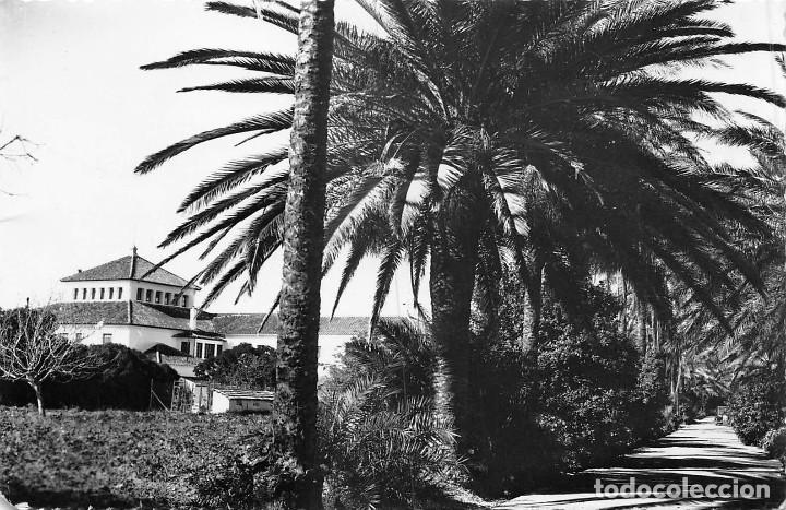 TORREMOLINOS (MÁLAGA).- HOTEL LA ROCA (Postales - España - Andalucia Moderna (desde 1.940))