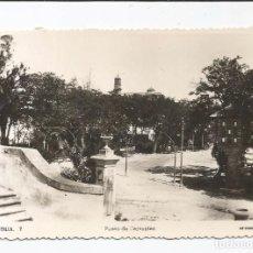 Postales: MONTILLA - PASEO DE CERVANTES - Nº 7 ED. ARRIBAS. Lote 91878020