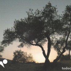 Postales: POSTAL SIERRA MORENA. Lote 96979003