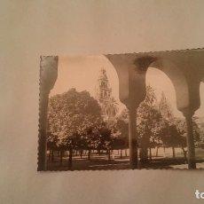 Postales: POSTAL CORDOBA MEZQUITA CATEDRAL CLAUSTRO DEL PATIO DE LOS NARANJOS SIN CIRCULAR. Lote 97695771