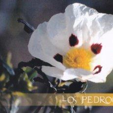 Postales: POSTAL LOS PEDROCHES. CORDOBA. Lote 103081323