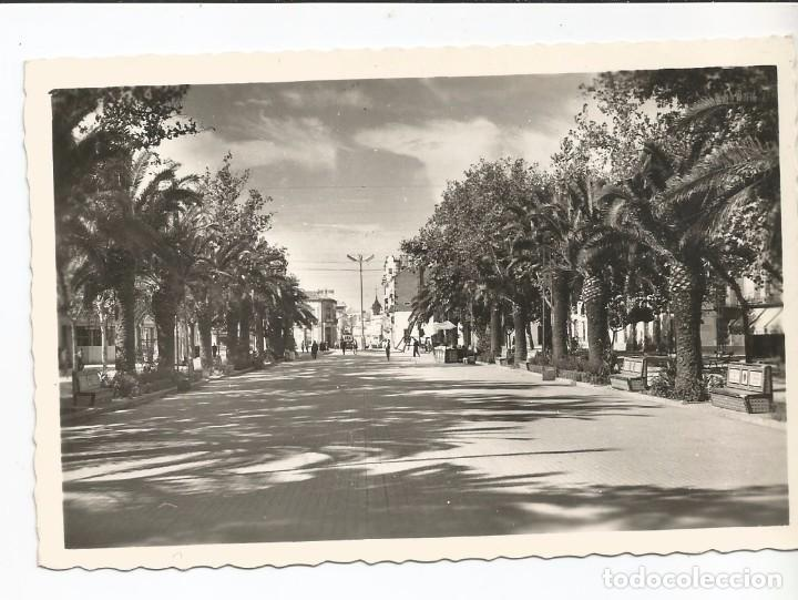 LINARES - PASEO DE LINAREJOS. PRIMER TRAMO- Nº 7 ED. ARRIBAS (Postales - España - Andalucia Moderna (desde 1.940))