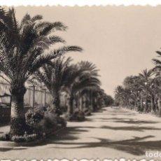 Postales: POSTAL PUERTO DE SANTA MARIA PARQUE DE CALDERON -CIRCULADA EN 1962 - C-3. Lote 105001983
