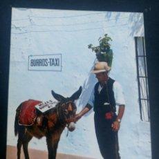Postales: POSTAL COSTA DEL SOL MIJAS BURROS TAXI. Lote 105856644