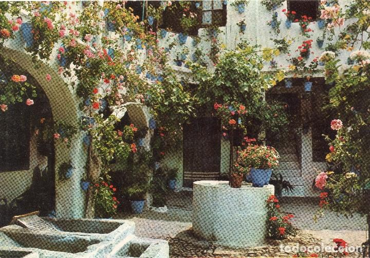 Andalucia Patio Andaluz Buy Postcards From Andalusia At
