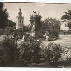Postales: MORÓN DE LA FRONTERA - MONUMENTO AL GALLO EN EL PASEO DE LA PEÑA - Nº 1001. Lote 111832143