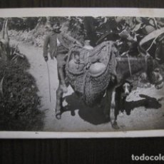 Postales: GRANADA - POSTAL PROTOTIPO ARCHIVO FOTOGRAFICO ROISIN - FOTO PEGADA-VER FOTOS-(52.097). Lote 112926279