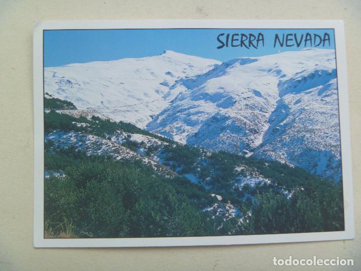 POSTAL DE GRANADA : SIERRA NEVADA (Postales - España - Andalucia Moderna (desde 1.940))