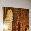 Postales: POSTAL CUEVA DE NERJA SALA DEL CATACLISMO DETALLE DEL CORDERILLO 1986. Lote 115500250