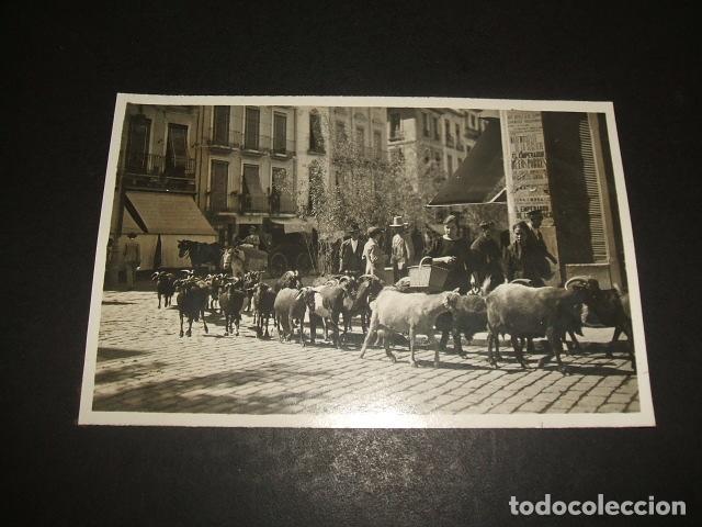 GRANADA REBAÑO DE CABRAS EN CALLE POSTAL FOTOGRAFICA HACIA 1920 (Postales - España - Andalucía Antigua (hasta 1939))