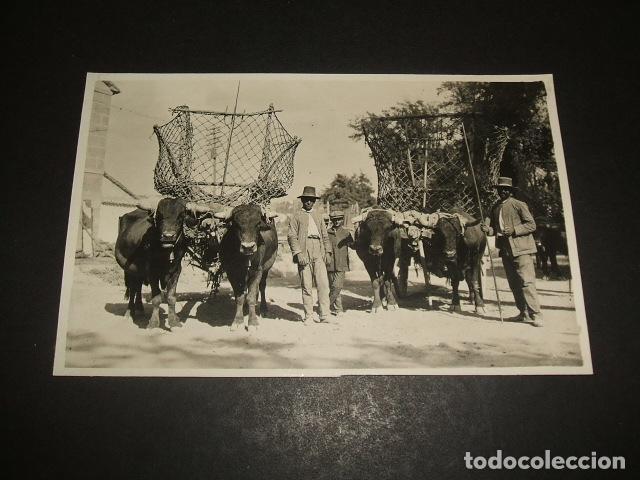 GRANADA CARROS POSTAL FOTOGRAFICA HACIA 1920 (Postales - España - Andalucía Antigua (hasta 1939))