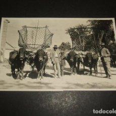 Postkarten - GRANADA CARROS POSTAL FOTOGRAFICA HACIA 1920 - 122573731