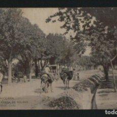 Postales: CHICLANA.ALAMEDA DE SOLANO.Nº 2. FOT.EL TREBOL.CÁDIZ.POSTÁL CIRCULADA EN 1907.. Lote 124543635