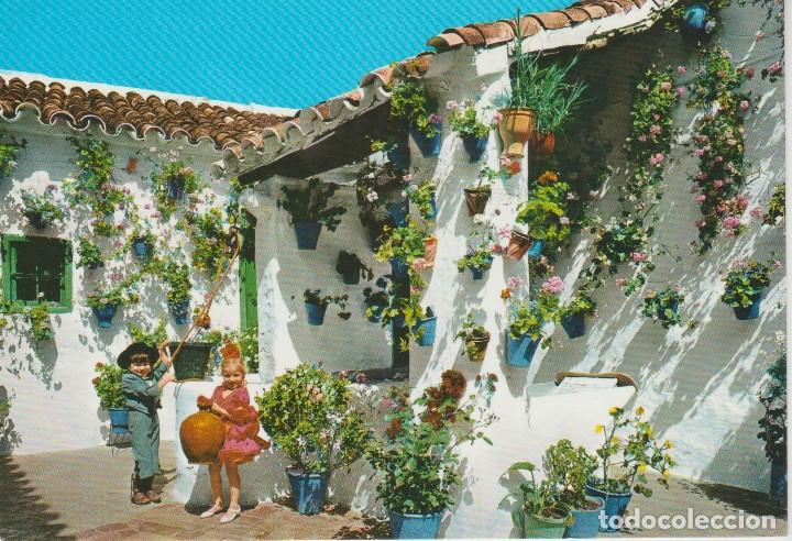1897 Tipico Patio Andaluz Buy Postcards From Andalusia At