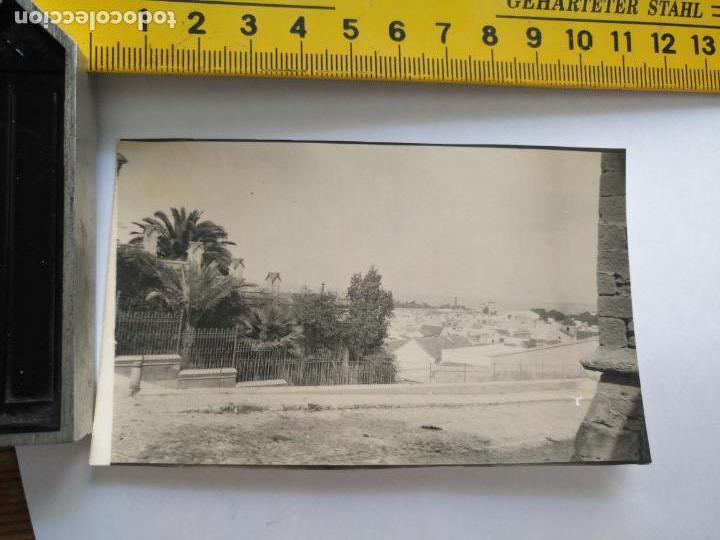 FOTOGRAFIA ORIGINAL ARCHIVO CADIZ ENRIQUE MOVELLAN PRUEBA PARA TARJETA POSTAL - (Postales - España - Andalucía Antigua (hasta 1939))