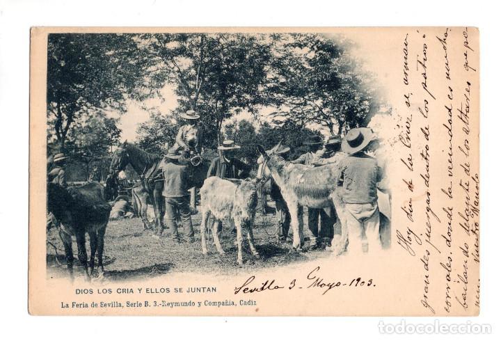 DIOS LOS CRIA Y ELLOS SE JUNTAN. LA FERIA DE SEVILLA. SERIE B 3 REYMUNDO Y COMPAÑIA CADIZ. (Postales - España - Andalucía Antigua (hasta 1939))