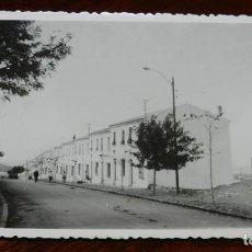 Postales: FOTOGRAFIA DE ESTEPA, SEVILLA, TAMAÑO POSTAL. FOTOGRAFO MARTOS.. Lote 138544230