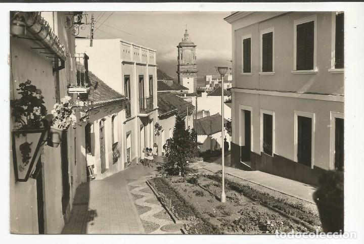 ALGECIRAS - CALLE RUIZ TAGLE - Nº 1016 ED. ARRIBAS (Postales - España - Andalucia Moderna (desde 1.940))