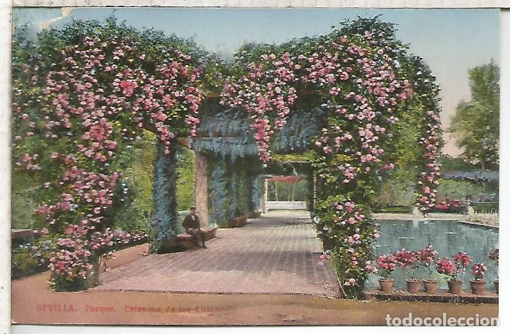 SEVILLA ESTANQUE DE LOS LIRIOS SIN ESCRBIR (Postales - España - Andalucía Antigua (hasta 1939))