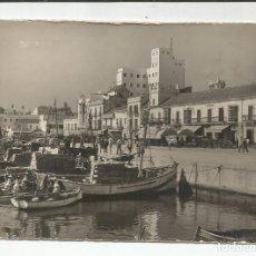 Postales: ALGECIRAS - PUERTO DE PESCADORES Y ACERA DE LA MARINA - Nº 1. Lote 143811326