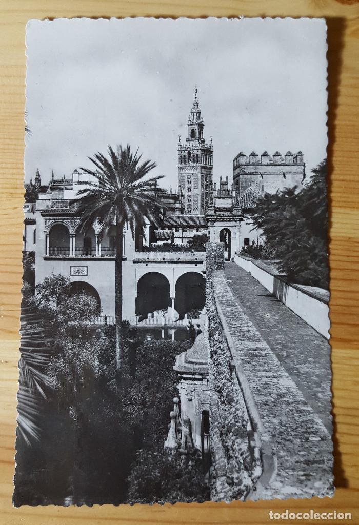 SEVILLA Nº 45 LA GIRALDA DESDE LOS REALES ALCAZARES ED. HELIOTI. ARTS. ESPA. MATASELLOS FATIMA (Postales - España - Andalucia Moderna (desde 1.940))