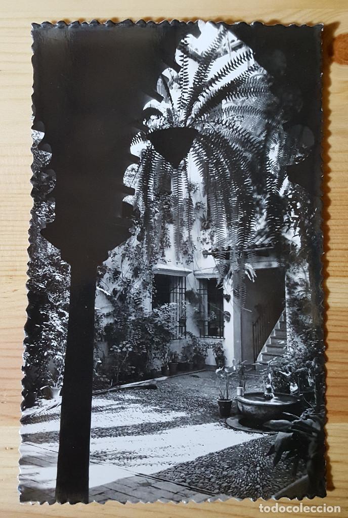 CORDOBA PATIO CORDOBES Nº 114 ED. SICILIA (Postales - España - Andalucia Moderna (desde 1.940))