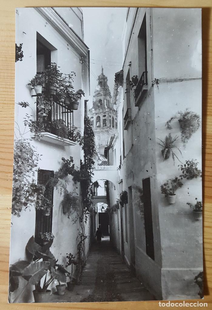 CORDOBA CALLEJA DE LAS FLORES ED. AISA Nº 225 (Postales - España - Andalucia Moderna (desde 1.940))