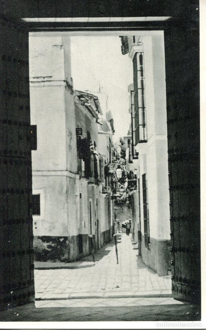 SEVILLA. RARA POSTAL CALLE JUSTINO DE NEVE (Postales - España - Andalucia Moderna (desde 1.940))