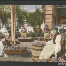Postales: ALMERIA-UVAS-FAENA UVERA-PAPELERIA SEMPERE-POSTAL ANTIGUA-(57.461). Lote 153872726