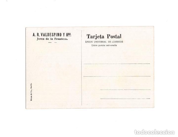 Postales: JEREZ DE LA FRONTERA.(CÁDIZ).- A.R. VALDESPINO Y HNO. PISANDORES DE UVA - Foto 2 - 154301470