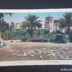 Postales: SEVILLA PLAZA DE AMERICA. Lote 155821018