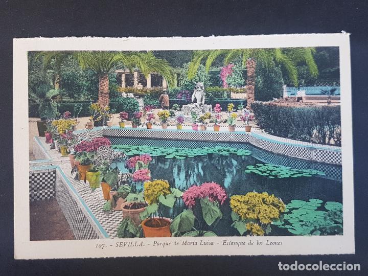 SEVILLA PARQUE MARIA UISA ESTANQUE DE LOS LEONES (Postales - España - Andalucía Antigua (hasta 1939))
