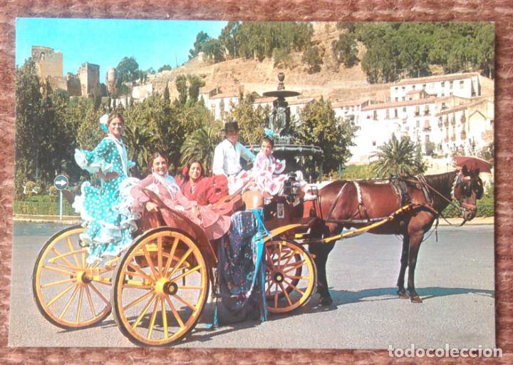 COSTA DEL SOL - ESCENA TIPICA (Postales - España - Andalucia Moderna (desde 1.940))