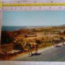 Postales: POSTAL DE MÁLAGA. AÑO 1962. NERJA, CARRETERA DE LA COSTA DEL SOL. CAMPESINO ARRIERO. 244. Lote 160704902