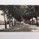 Postales: TORRE DEL MAR (MALAGA) POSTAL ANIMADA, NO.6, PASEO DE LARIOS. EDITA: FOTO CORTES (H.1950?). Lote 160846130