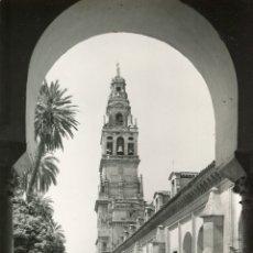 Postales: CORDOBA. MEZQUITA CATEDRAL. PATIO DE LOS NARANJOS. GARCIA GARRABELLA. Lote 170182960