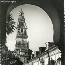 Postales: CORDOBA. MEZQUITA CATEDRAL. PATIO DE LOS NARANJOS . GARCIA GARRABELLA. Lote 170183296
