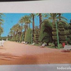 Postales: CÁDIZ - POSTAL CÁDIZ - PARQUE GENOVÉS- PASEO DE LAS PALMERAS. Lote 171699288