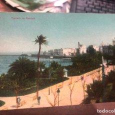 Postales: POSTAL CADIZ - ALAMEDA DE APODACA. Lote 173923035